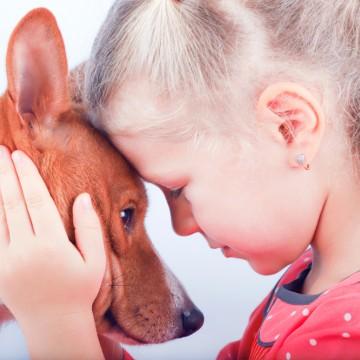 Hypo, hyper… votre chien peut les sentir venir